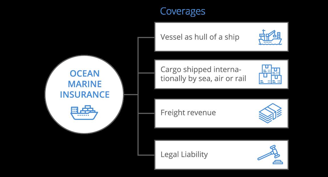 Ocean Marine Infographic - desktop